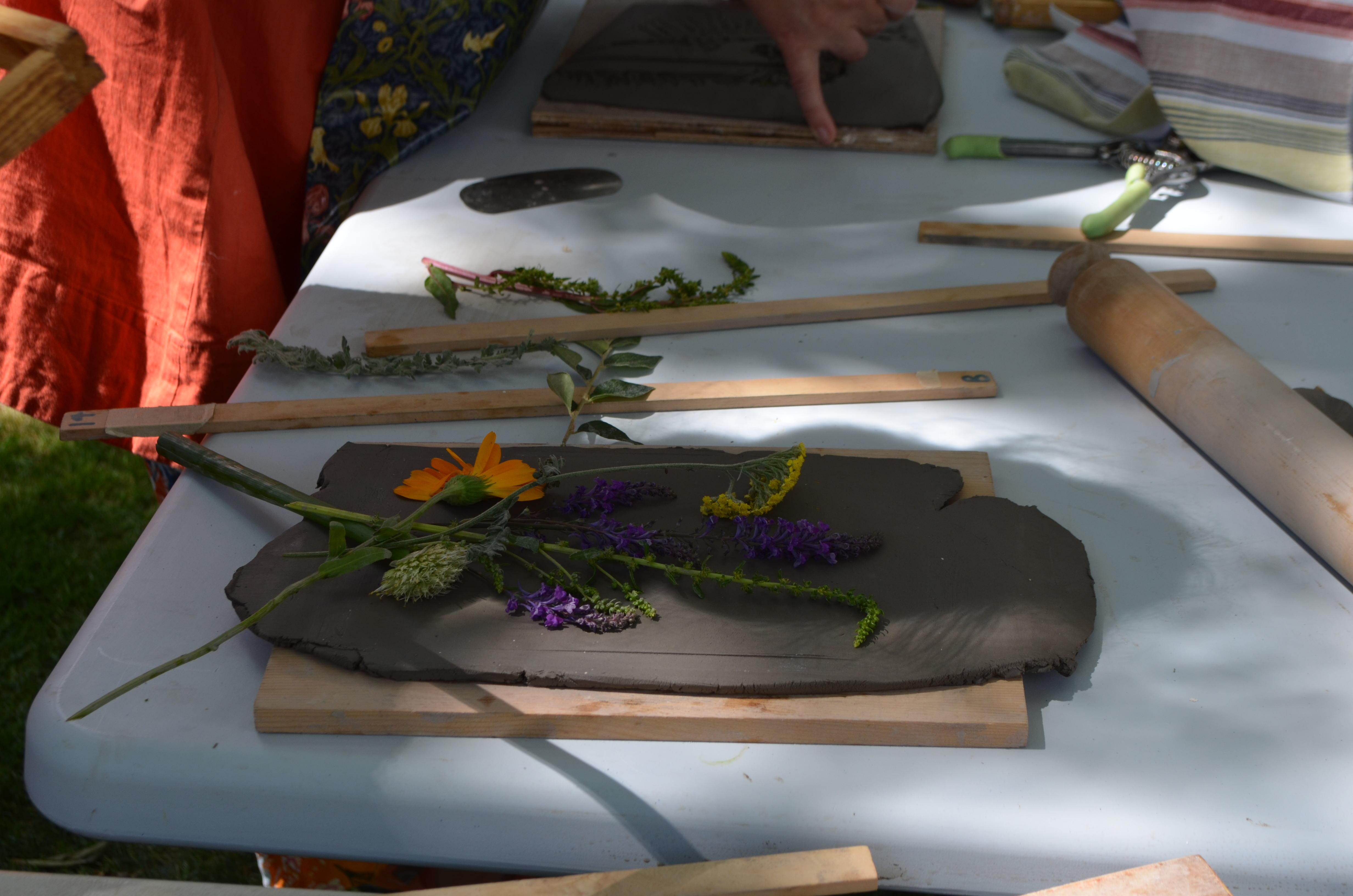 Botanical Art workshop