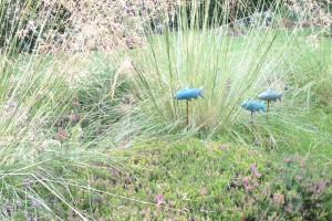 Dalkey-Garden-School-Gardening-Border