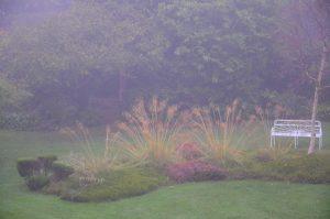 Dalkey-Garden-School-Mist-BG