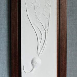 Botanical Plaster cast - Beetroot