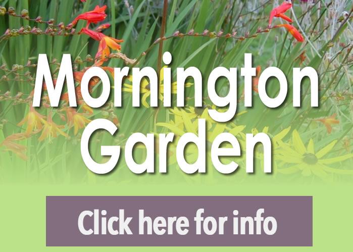 Dalkey Garden Morington Open Garden Opening Times
