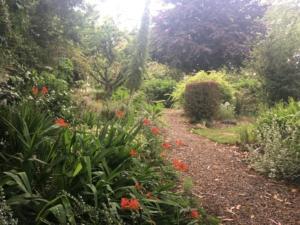 Mornington garden view from side gate